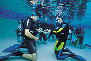 PADI Referral Program's with Divers International