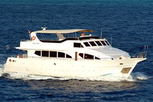 M/Y Discovery Liveaboard Diving Motor Yacht in the South Red Sea Egypt
