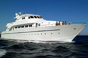 M/Y Excellence Liveaboard Diving Motor Yacht in the South Red Sea Egypt