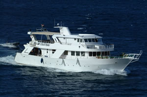 M/Y Sir Cousteau Liveaboard Diving Motor Yacht in the South Red Sea Egypt